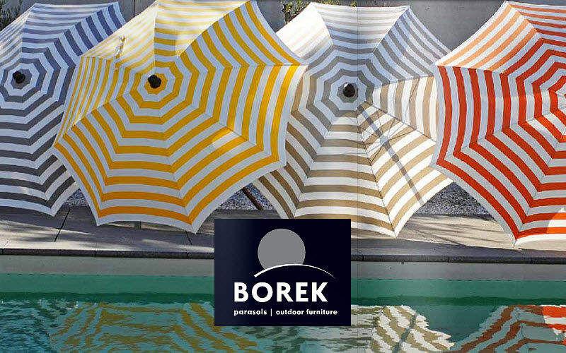Borek  |