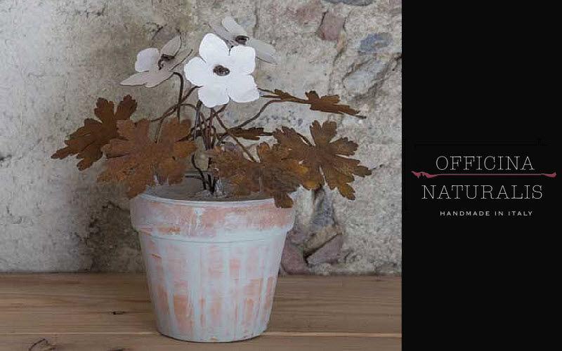 OFFICINA NATURALIS Composition florale Fleurs et compositions Fleurs et Senteurs  |