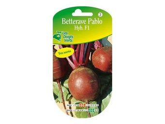 LES DOIGTS VERTS - semence betterave pablo hyb. f1 - Semence