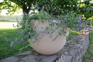 Barre Bachelin Vasque de jardin
