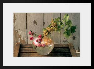 PHOTOBAY - roses et groseilles blanches - Photographie