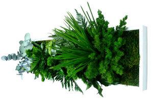 FLOWERBOX - tableau nature panoramic avec plantes stabilisées - Tableau Végétal