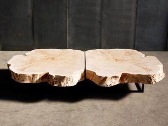 HEERENHUIS MANUFACTUUR -  - Table Basse Forme Originale
