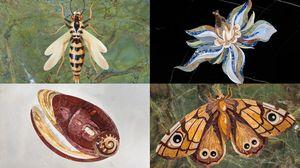 MANEO - insectes--_ - Décoration Murale