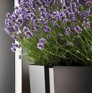 Flora - octa - Bac À Fleurs