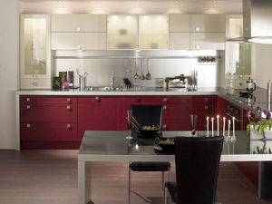 Elite Trade Kitchens -  - Cuisine Contemporaine