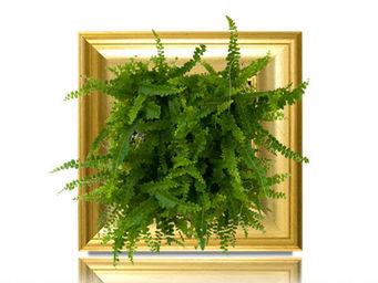 WALLFLOWER - tableau végétal fougix wallflower small doré - Tableau Végétal