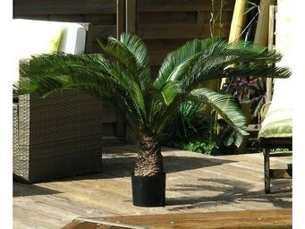 Deco Factory - palmier cycas artificiel bahia 100 cm - Arbre Artificiel