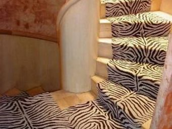 Moquettes A3C CARPETS - tapis d'escalier z�bre 1218 - Tapis D'escalier