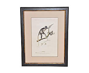Demeure et Jardin - gravure guenon - Gravure