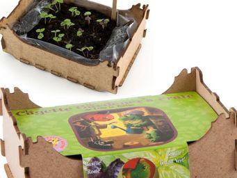 Radis Et Capucine - du basilic à semer dans sa cagette de légumes - Potager D'intérieur