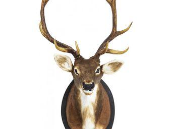 KARE CLICK - tête deer fur - Trophée De Chasse