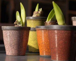 Domani - hanoi - Pot De Fleur