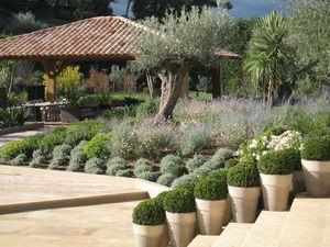 ARCHI PAYSAGE - pots - Jardin Paysager