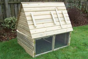 Pet Arks - the attic ark - Poulailler