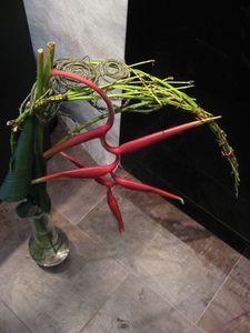 Piverdie -  - Composition Florale