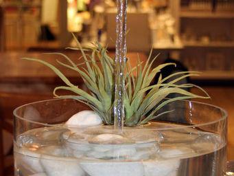 Le Pere Pelletier - fontaine aquarium avec robinet magique 25x20cm - Fontaine D'intérieur