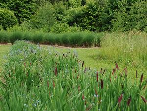 ATELIER JARDINS -  - Jardin Paysager