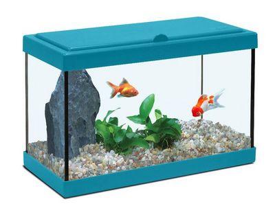 ZOLUX - Aquarium-ZOLUX-Aquarium enfant bleu lagon