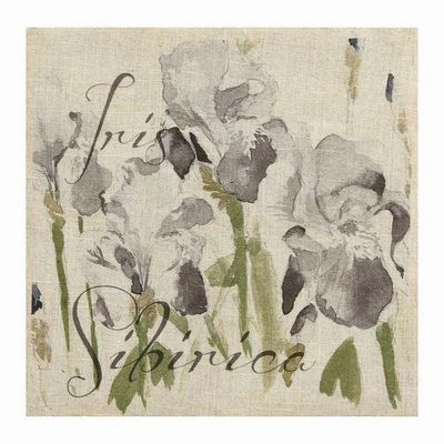 Interior's - Tableau d�coratif-Interior's-Tableau d�coratif Iris