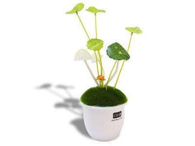 WHITE LABEL - Veilleuse Enfant-WHITE LABEL-Veilleuse champignons � LED lumineux lumiere deco