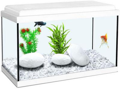 ZOLUX - Aquarium-ZOLUX-Aquarium enfant blanc 12.5L