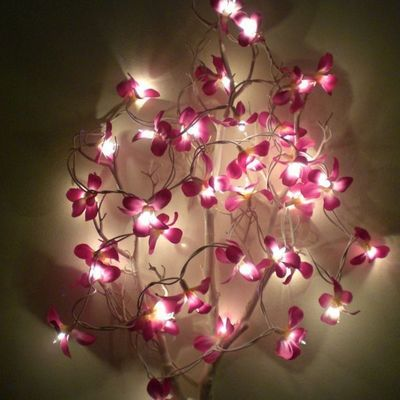 atoutdeco.com - Guirlande lumineuse-atoutdeco.com-guirlande lumineuse fleurs de frangipanier