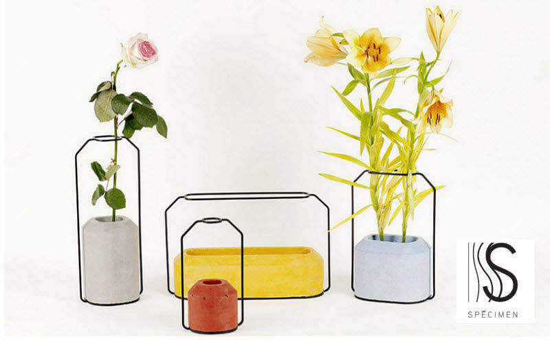SPECIMEN EDITIONS Flower box Window box Garden Pots  |