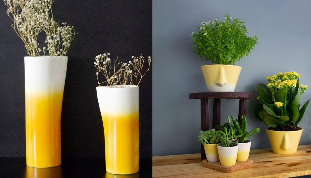 DEDAL Flower Vase Vases Flowers and Fragrances  |