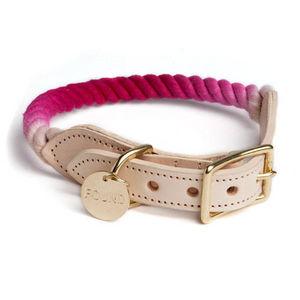 FOUND MY ANIMAL -  - Dog Collar