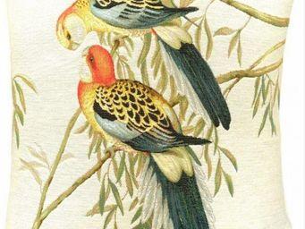 Art De Lys - 2 perroquets colorés, fond blanc - Square Cushion