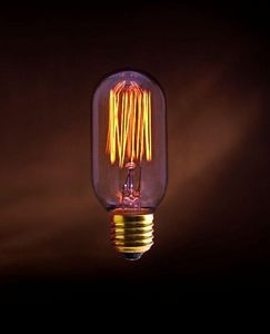 JURASSIC LIGHT - ancienne alan - Light Bulb Filament