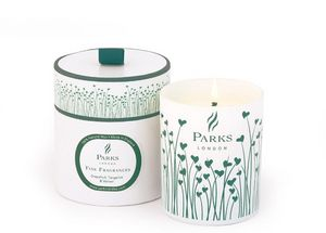 PARKS - grapefruit, tangerine & vetiver - Scented Candle