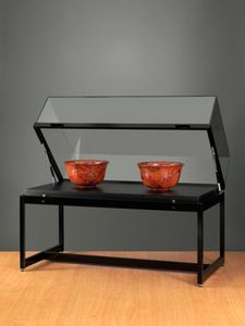 VITRINES SARAZINO - tvt 1200 250  - Museum Display Case