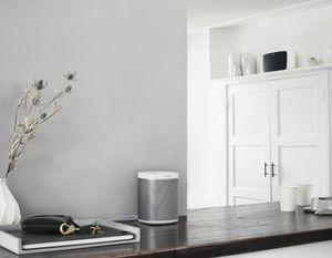 Sonos - play1-- - Speaker