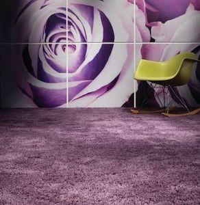 Lomas Carpets - ultimate 17 two tone shagpile - Fitted Carpet
