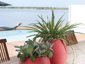 DEROMA France -  - Flower Pot