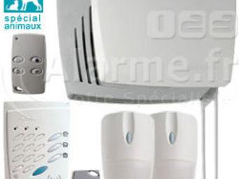 Zen Attitude - dasa 04 f - Burglar Alarm