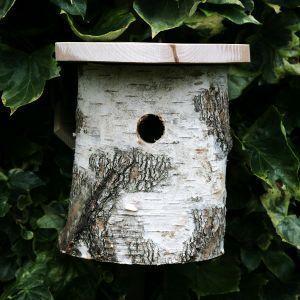 Wildlife world - natural silver birch tit box - Birdhouse