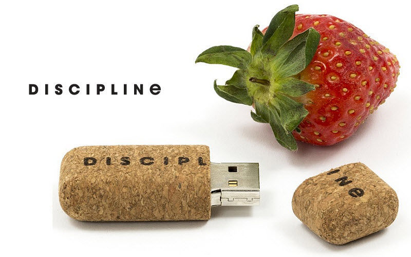 DISCIPLINE USB Stick Bürotechnik High-Tech  |