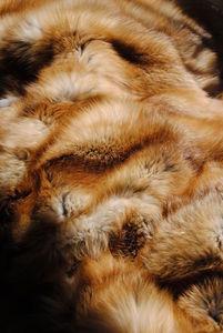 NORKI - renard de feu - Plaid