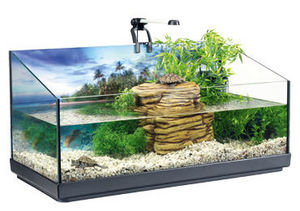 Tetra - aquaterrarium 80l kit complet 76x38x37cm - Aquarium