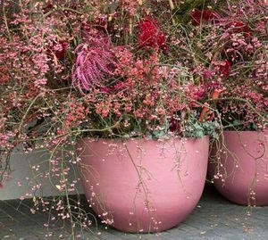 DOMANI -  - Blumenkübel