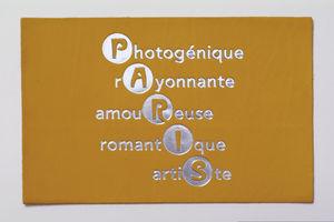 BANDIT MANCHOT - paris ap06 - Postkarte