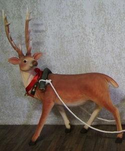 DECO PRIVE - renne à louer - Weihnachtsschmuck