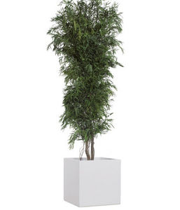 Stabilisierter Baum