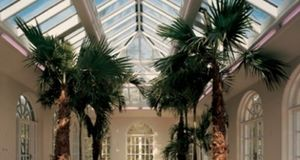 Malbrook Conservatories -  - Glasdach