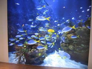 CEILICA - aquario - Bewegliche Wand