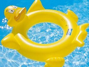 Piscines Desjoyaux -  - Schwimmring