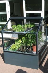 Growcamp - potager surélevé de 50cm avec serre de jardin 120 - Mini Treibhaus